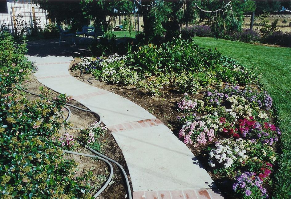 Brick Path & Plantings Tiburon California